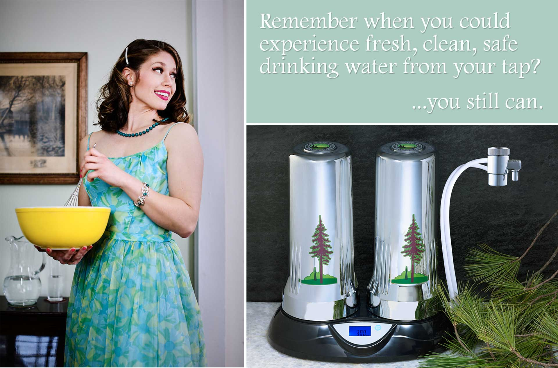 Remember when you could experience fresh, clean, safe drinking water from your tap? ...you still can.